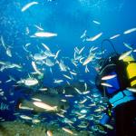 Subacquea Pantelleria