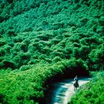 Sentieri a Pantelleria